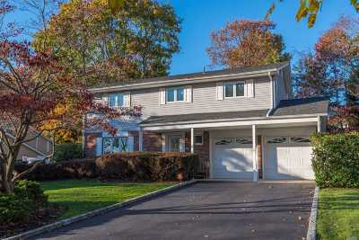 Smithtown Single Family Home For Sale: 29 Leslie Ln