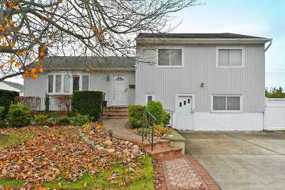 Plainview Single Family Home For Sale: 87 Farmers Ave