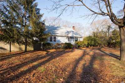 East Islip Single Family Home For Sale: 29 W Madison St
