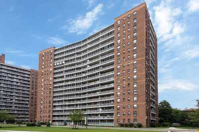 Rego Park Rental For Rent: 61-35 98th St #7C
