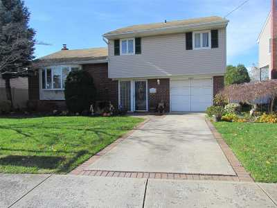 N. Bellmore Single Family Home For Sale: 1402 Liberty Ave