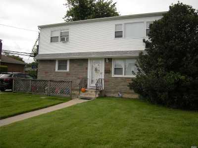 Seaford Single Family Home For Sale: 1100 Douglas Pl