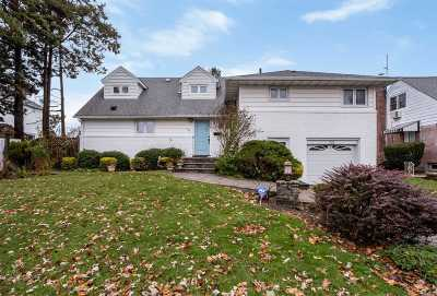 Plainview Single Family Home For Sale: 94 Westbury Ave