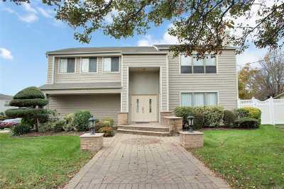 Hicksville Single Family Home For Sale: 31 Albert Rd