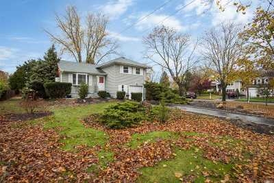 Smithtown Single Family Home For Sale: 19 Gedney Ave