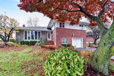 Plainview Single Family Home For Sale: 11 Roxton Rd