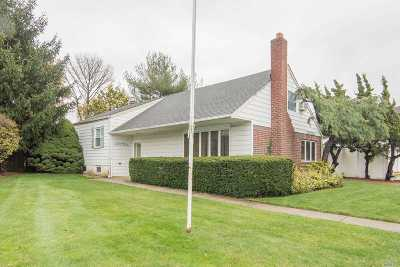 Hicksville Single Family Home For Sale: 28 Seth Ln