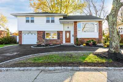 Massapequa Park Single Family Home For Sale: 329 Rose St