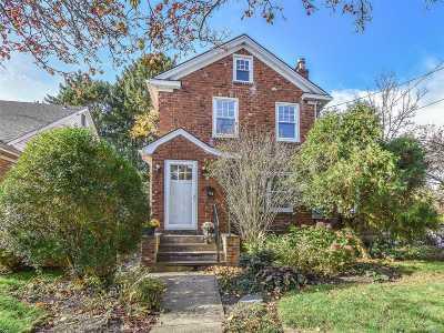 Nassau County Single Family Home For Sale: 74 Irma Ave