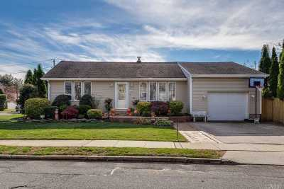 Hicksville Single Family Home For Sale: 39 Michigan Dr