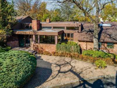 Great Neck Single Family Home For Sale: 29 Split Rock Dr