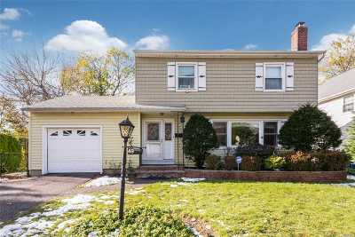 Garden City Single Family Home For Sale: 49 Commander Ave