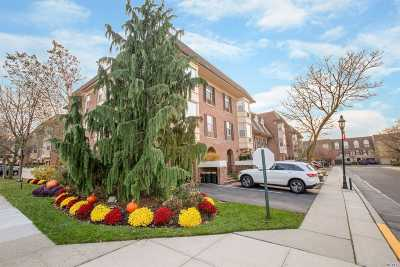 Bayside Condo/Townhouse For Sale: 206-14 Emily Rd #1st Fl
