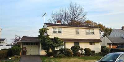 Levittown Single Family Home For Sale: 21 The Plains Rd