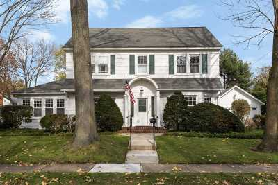 Garden City Single Family Home For Sale: 127 Salisbury Ave