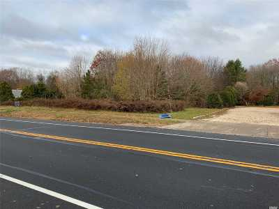Aquebogue Residential Lots & Land For Sale: 730 Main Rd