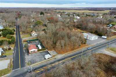 Aquebogue Residential Lots & Land For Sale: Main Rd