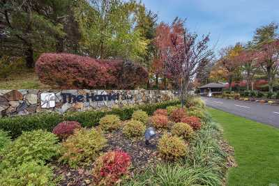 Jericho Condo/Townhouse For Sale: 71 Foxwood Dr