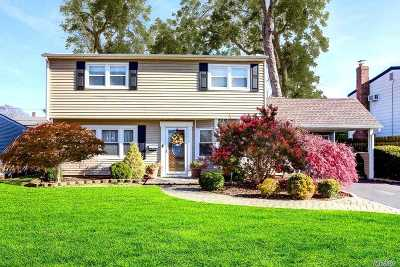 Levittown Single Family Home For Sale: 7 Mill Ln