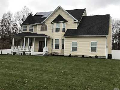 Pt.jefferson Sta Single Family Home For Sale: 30 Evergreen Ave