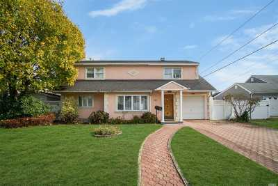 Bethpage Single Family Home For Sale: 548 Adele Pl