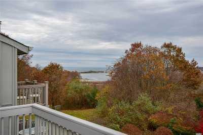 Port Jefferson Condo/Townhouse For Sale: 41 Overlook Pass