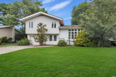 Jericho Single Family Home For Sale: 42 Flower Ln