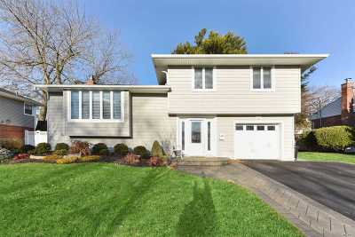 Plainview Single Family Home For Sale: 121 Sutton Dr