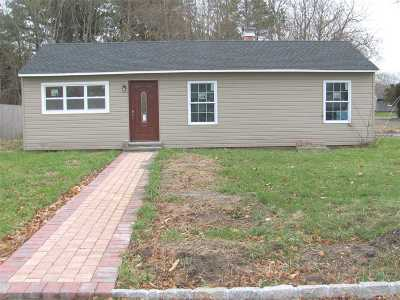 Bellport Single Family Home For Sale: 803 Provost Ave