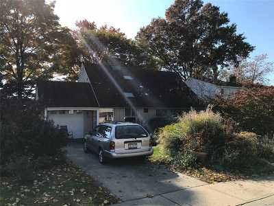 Levittown Single Family Home For Sale: 28 Marksman Ln