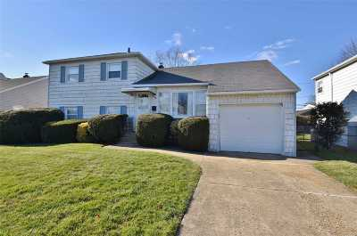 Seaford Single Family Home For Sale: 2406 Langen Dr