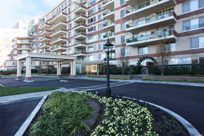 Garden City Condo/Townhouse For Sale: 111 Cherry Valley Ave #414