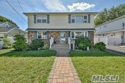 Massapequa Single Family Home For Sale: 220 N Chestnut St