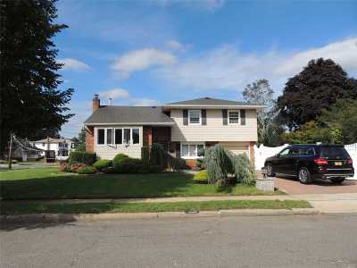 Wantagh Single Family Home For Sale: 1800 Roland Ave