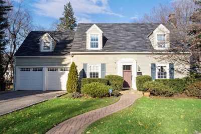 Rockville Centre Single Family Home For Sale: 17 Salem Rd