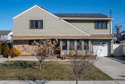Island Park Single Family Home For Sale: 175 Traymore Blvd
