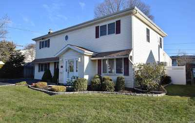 Bethpage Single Family Home For Sale: 328 Herbert Pl