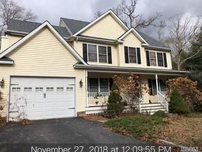 Medford Single Family Home For Sale: 51 Park Ln