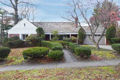 Great Neck Single Family Home For Sale: 46 N Somerset Dr
