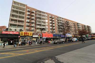 Flushing Condo/Townhouse For Sale: 41-25 Kissena Blvd #1Ee