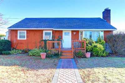 Hicksville Single Family Home For Sale: 57 Princess St