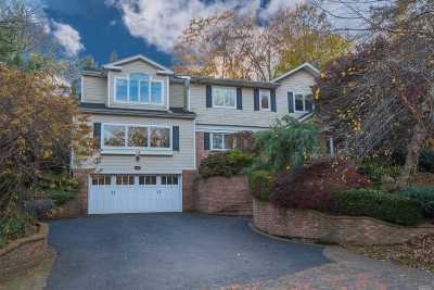 Nassau County Single Family Home For Sale: 340 Chestnut Dr