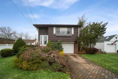 Massapequa Single Family Home For Sale: 223 N Virginia Ave