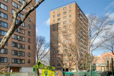 Long Island City Co-op For Sale: 33-43 14th St #6A