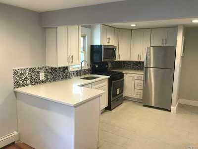 Westbury Single Family Home For Sale: 531 Cross St