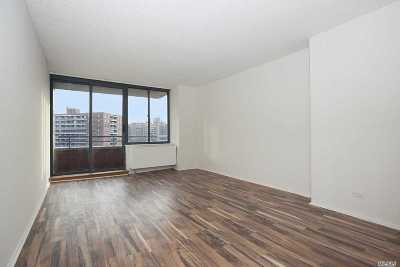 Rego Park Condo/Townhouse For Sale: 62-54 97 Pl #11L