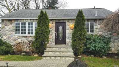 Hicksville Single Family Home For Sale: 25 Michigan Dr
