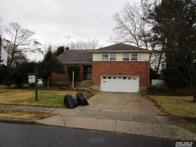 Westbury Single Family Home For Sale: 838 Eastfield Rd