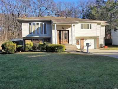 W. Hempstead Single Family Home For Sale: 445 Joan Ct