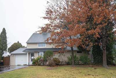Westbury Single Family Home For Sale: 227 W Cypress Ln